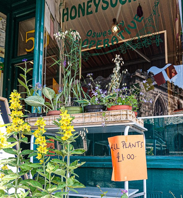 picture of the front of the shop with some flowers